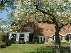 Vergrote afbeelding van Bed and Breakfast Oenemastate in Wytgaard