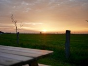 Voorbeeld afbeelding van Huurtent HetBoerenBed De Landhoeve in Oosterwolde Gld