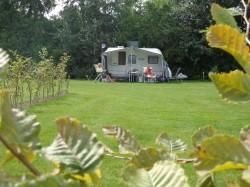 Vergrote afbeelding van Kamperen Camping De Lage Werf in Den Bommel