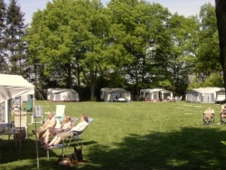 Vergrote afbeelding van Kamperen Camping de Bosrand in Ermelo