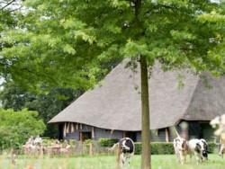 Vergrote afbeelding van Groepsaccommodatie De Vlaamse Schuur Landgoed De Hoevens in Alphen NB