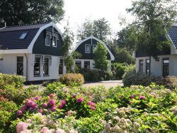 Vergrote afbeelding van Bungalow, vakantiehuis Résidence Koningshof  in Schoorl