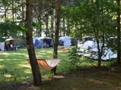 Vergrote afbeelding van Kamperen Camping het Horstmannsbos in Gasselte
