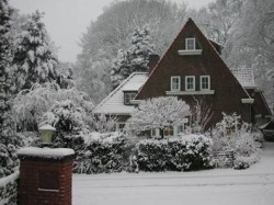Vergrote afbeelding van Bed and Breakfast Ivy Cottage in Berg en Dal