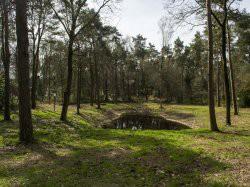Derde extra afbeelding van Bungalow, vakantiehuis Het Vossenveen in Zelhem