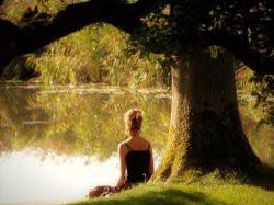 Vergrote afbeelding van Retraite Het kleine Paradijs in Easterein