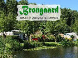 Vergrote afbeelding van Naturistencamping, Naturistenpark De Brongaard in Hellevoetsluis