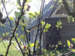Vergrote afbeelding van Bungalow, vakantiehuis Natuurhuisje HelloTwello in Twello