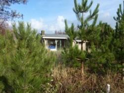 Vergrote afbeelding van Bungalow, vakantiehuis Cranberry in Ballum (Ameland)