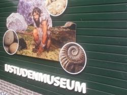 Vergrote afbeelding van Museum St. IJstijdenmuseum in Buitenpost
