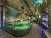 Voorbeeld afbeelding van Museum Fort Kijkduin en Noordzee Aquarium in Den Helder