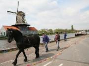 Voorbeeld afbeelding van Rondvaart, Boottocht Trekvaart Leiden-Delft-Den Haag in Den Haag