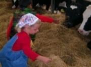 Voorbeeld afbeelding van Groepsactiviteiten In de Oude Melkput in Oude Niedorp