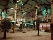 Voorbeeld afbeelding van Klimmen Recreatieparadijs De Belhamel in Lage Zwaluwe