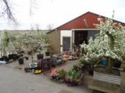 Voorbeeld afbeelding van  Boerderij bezoek,Kinderboerderij Vink Fruitboerderij in Kraggenburg