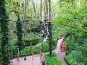 Voorbeeld afbeelding van Klimmen Fun Forest Venlo in Tegelen