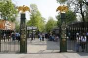 Voorbeeld afbeelding van Dierentuin Natura Artis Magistra in Amsterdam