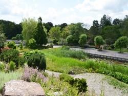 Vergrote afbeelding van Tuinen, Kunsttuinen Hortus Haren Holland in Haren Gr