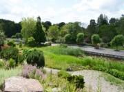 Voorbeeld afbeelding van Tuinen, Kunsttuinen Hortus Haren Holland in Haren Gr
