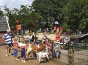 Voorbeeld afbeelding van  Boerderij bezoek,Kinderboerderij Kinderboerderij Dondertman in Holten
