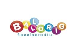 Vergrote afbeelding van Indoor Speelparadijs Ballorig Nieuw Bergen in Nieuw Bergen