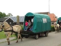 Vergrote afbeelding van Paardrijden, Manege, Huifkar Huifkarverhuur Estelle in Oude Willem