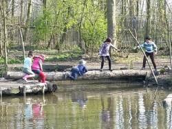 Vergrote afbeelding van Speeltuin Natuurspeeltuin de Speeldernis in Rotterdam
