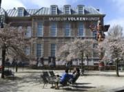 Voorbeeld afbeelding van Museum, Galerie, Tentoonstelling Museum Volkenkunde in Leiden