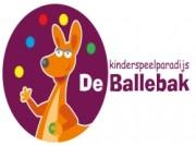Voorbeeld afbeelding van Indoor Speelparadijs Kinderspeelparadijs de Ballebak in Zoetermeer