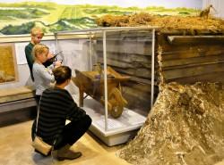 Derde extra afbeelding van Museum, Galerie, Tentoonstelling Zee- en Havenmuseum in IJmuiden
