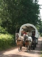 Eerste extra afbeelding van Paardrijden, Manege, Huifkar Ruitercentrum het Fjordenpaard in Een