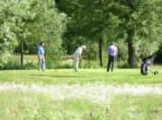 Voorbeeld afbeelding van Golfen Golfbaan 't Zelle in Hengelo Gld