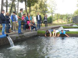 Eerste extra afbeelding van Groepsactiviteiten Gezinspark en forellenkwekerij 't Smallert in Emst