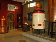 Voorbeeld afbeelding van Museum, Galerie, Tentoonstelling Elsmuseum in Beek (L)