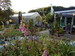 Botanische Tuin Alkmaar : Tuinen kunsttuinen hortus alkmaar alkmaar noord holland