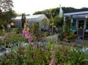 Voorbeeld afbeelding van Tuinen, Kunsttuinen Hortus Alkmaar in Alkmaar