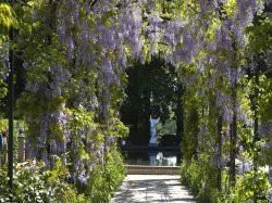 Vergrote afbeelding van Tuinen, Kunsttuinen Tuin de Lage Oorsprong in Oosterbeek