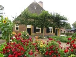 Vergrote afbeelding van Museum, Galerie, Tentoonstelling Veluws Museum Hagedoorns Plaatse in Epe