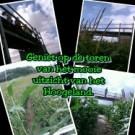 Voorbeeld afbeelding van Groepsactiviteiten De Bloemenboerderij/Maisdoolhof in Saaxumhuizen
