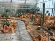 Voorbeeld afbeelding van Tuinen, Kunsttuinen Hortus Overzee in Den Helder