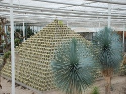 Derde extra afbeelding van Attractie, Pretpark Belevingspark CactusOase in Ruurlo