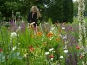 Voorbeeld afbeelding van Tuinen, Kunsttuinen Rosenhaege Living Gardens  in Winterswijk
