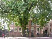 Voorbeeld afbeelding van Museum, Galerie, Tentoonstelling Museum Rijswijk in Rijswijk Z-H