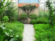 Voorbeeld afbeelding van Tuinen, Kunsttuinen Wandeltuin De Groene Schuur in Groessen
