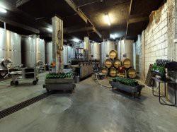 Eerste extra afbeelding van Wijngaard, wijnproeverij Wijnmuseum Wijnhuis Robbers & van den Hoogen in Arnhem