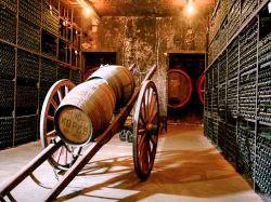 Tweede extra afbeelding van Wijngaard, wijnproeverij Wijnmuseum Wijnhuis Robbers & van den Hoogen in Arnhem