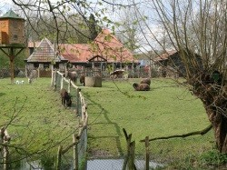 Tweede extra afbeelding van Kinderboerderij, Boerderij bezoek Kinderboerderij Hagerhof in Venlo