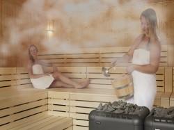 Vergrote afbeelding van Sauna, Beauty, Wellness SPAWellness Lomm in Lomm