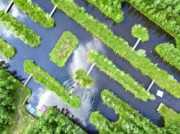 Voorbeeld afbeelding van Tuinen, Kunsttuinen Natuur en Cultuurpark Vijversburg in Tytsjerk