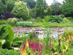 Vergrote afbeelding van Tuinen, Kunsttuinen De Vijvertuinen van Ada Hofman in Loozen